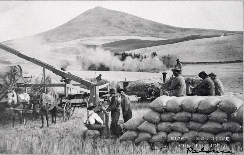 Wheat Farming on the Palouse