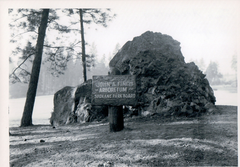 Finch Arboretum circa 1951