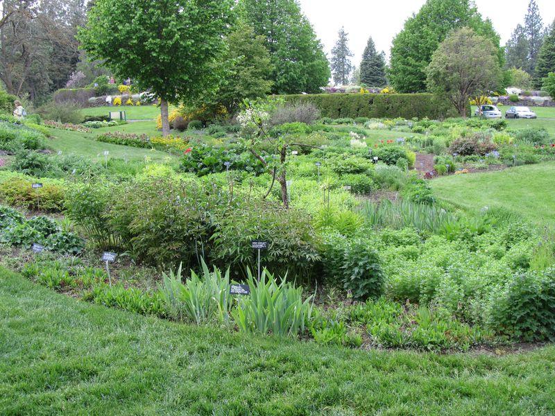 Joel E. Ferris Perennial Gardens