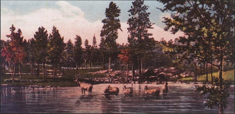 Elk Pond, c. 1915