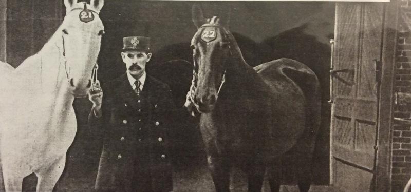 Spokane Fire Station No. 2 Horses