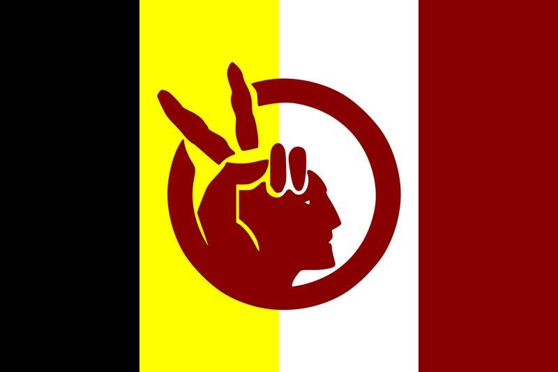 American Indian Movement (AIM) flag