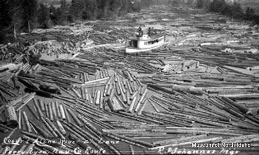 Dale Lyon's tug boat working in a river of logs.