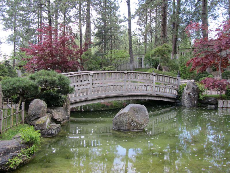 Japanese Garden Bridge and Pond