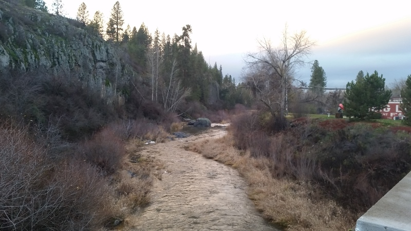 View of the Creek